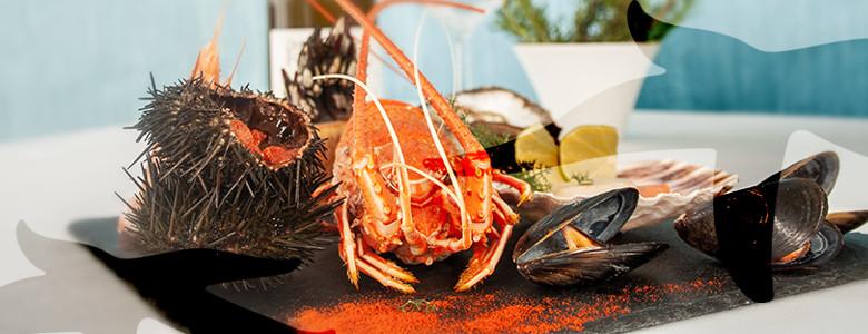 Estrela do Mar, Restaurante Mafra, Ribamar